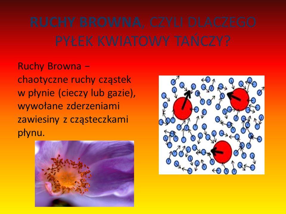 RUCHY BROWNA, CZYLI DLACZEGO PYŁEK KWIATOWY TAŃCZY? Ruchy Browna chaotyczne ruchy cząstek w płynie (cieczy lub gazie), wywołane zderzeniami zawiesiny