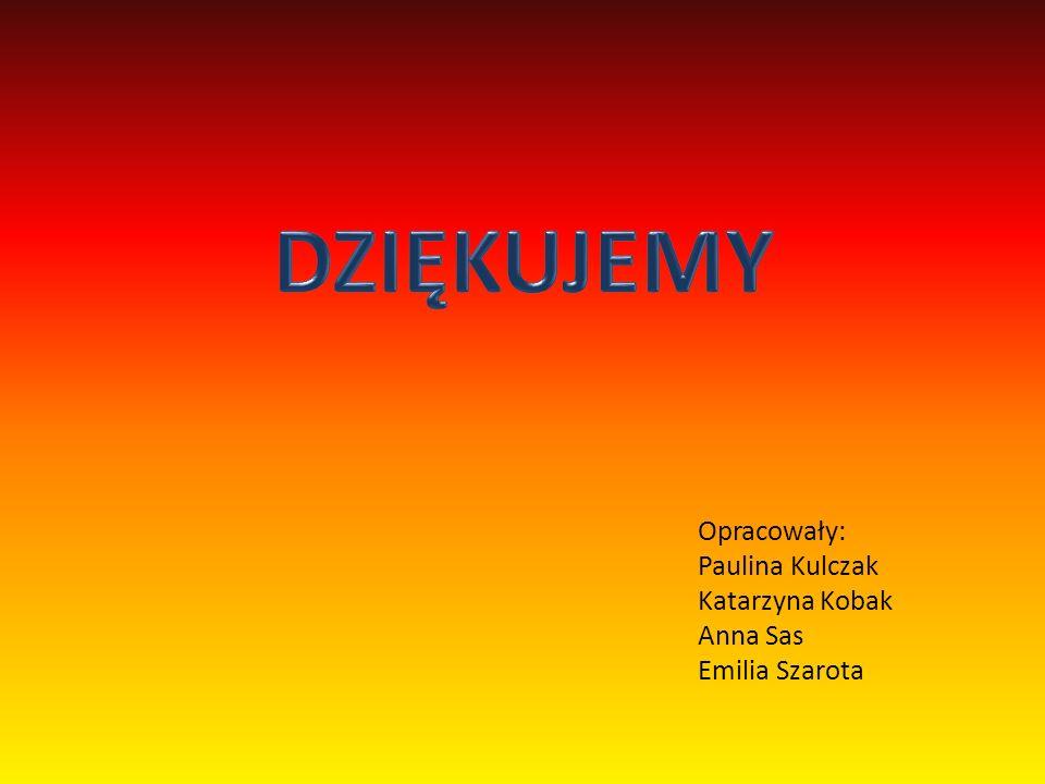 Opracowały: Paulina Kulczak Katarzyna Kobak Anna Sas Emilia Szarota