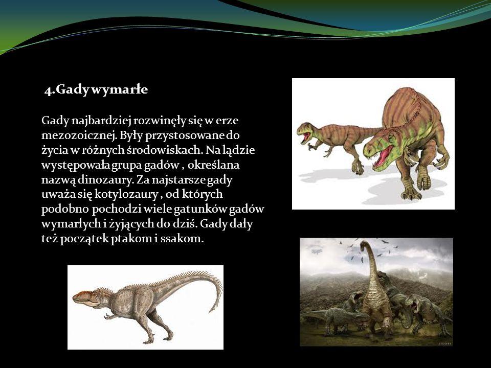 4.Gady wymarłe Gady najbardziej rozwinęły się w erze mezozoicznej.