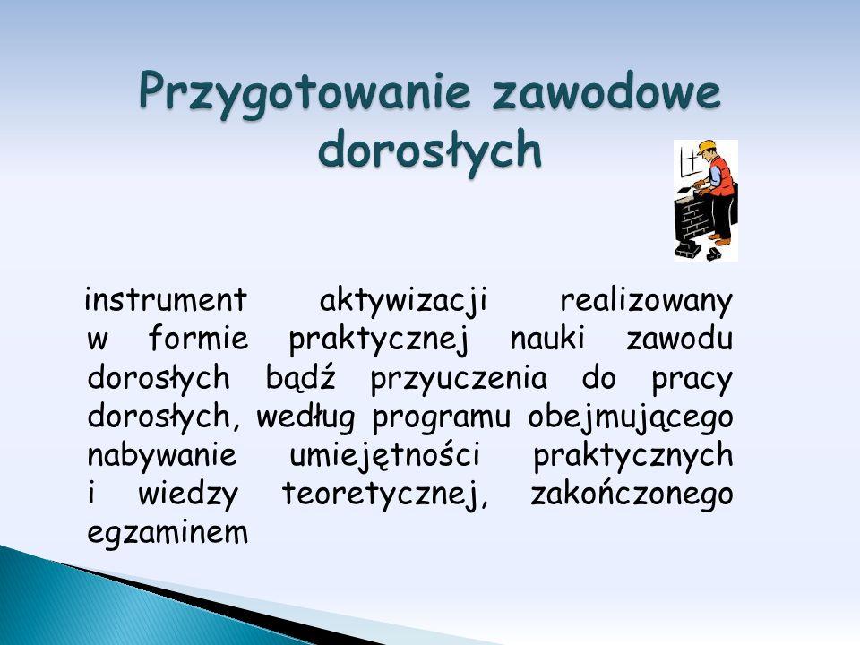 instrument aktywizacji realizowany w formie praktycznej nauki zawodu dorosłych bądź przyuczenia do pracy dorosłych, według programu obejmującego nabyw