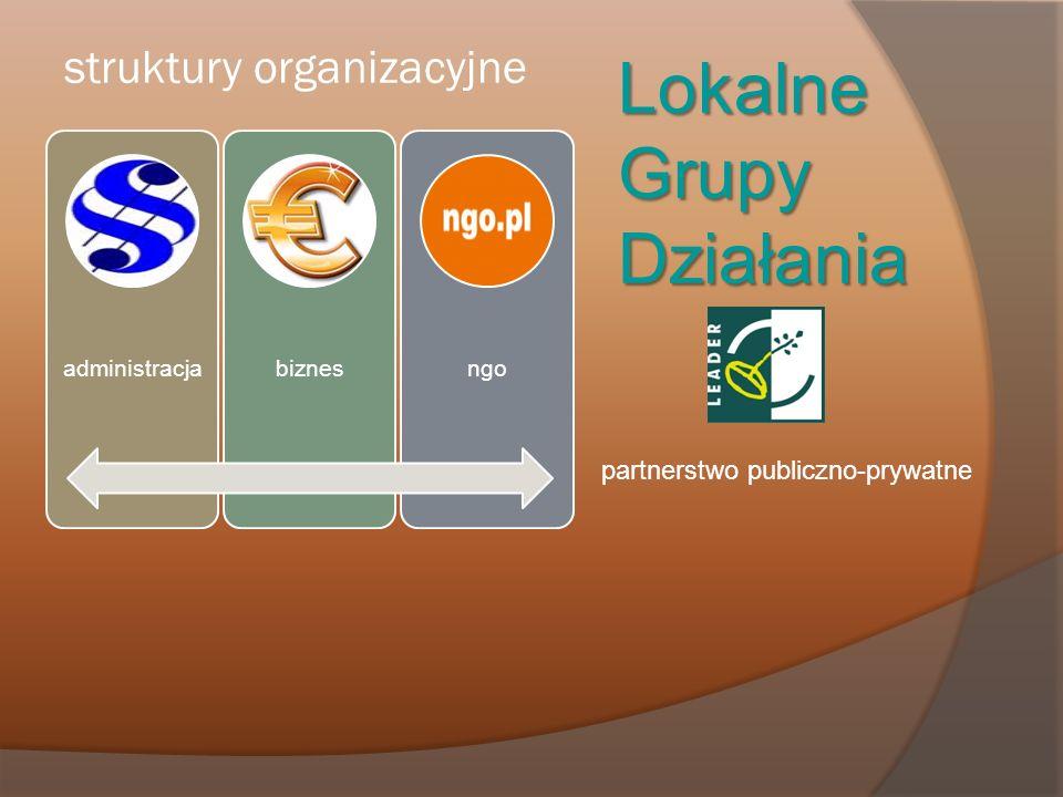 struktury organizacyjne Lokalne Grupy Działania partnerstwo publiczno-prywatne administracjabiznesngo
