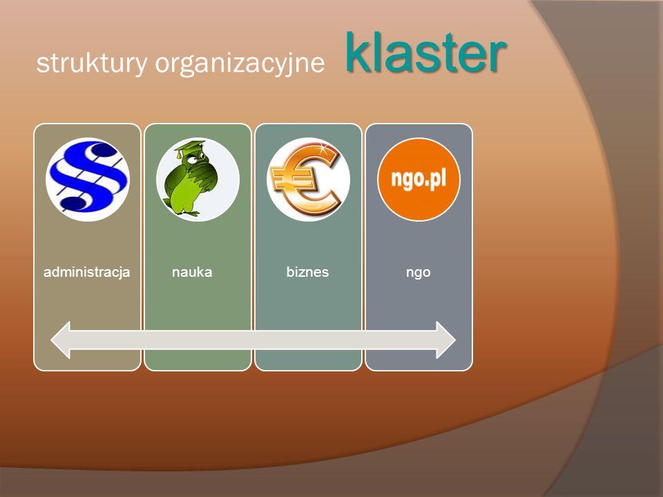 struktury organizacyjne klaster administracjanaukabiznesngo