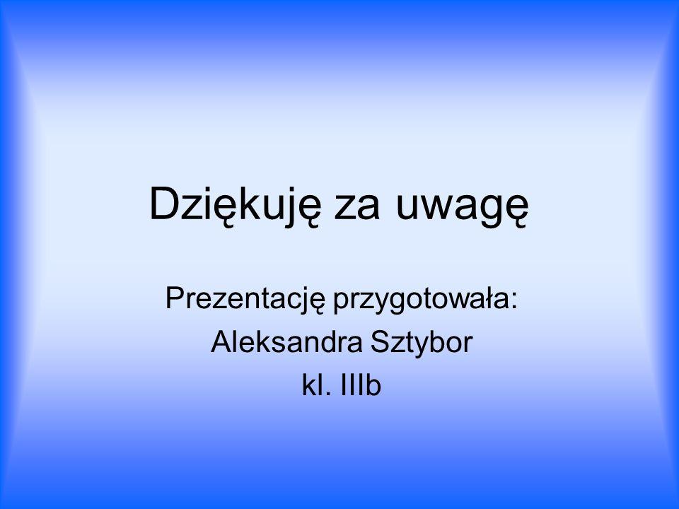 Dziękuję za uwagę Prezentację przygotowała: Aleksandra Sztybor kl. IIIb