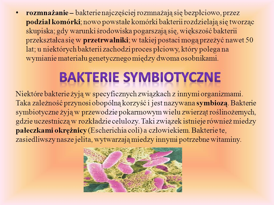 Bakterie mimo niewielkich rozmiarów i prostej budowy, wykonują te same czynności życiowe, co pozostałe organizmy. Są to między innymi: oddychanie – is