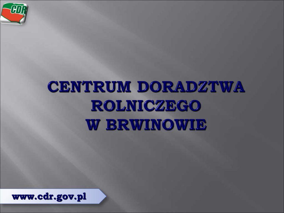 www.cdr.gov.pl