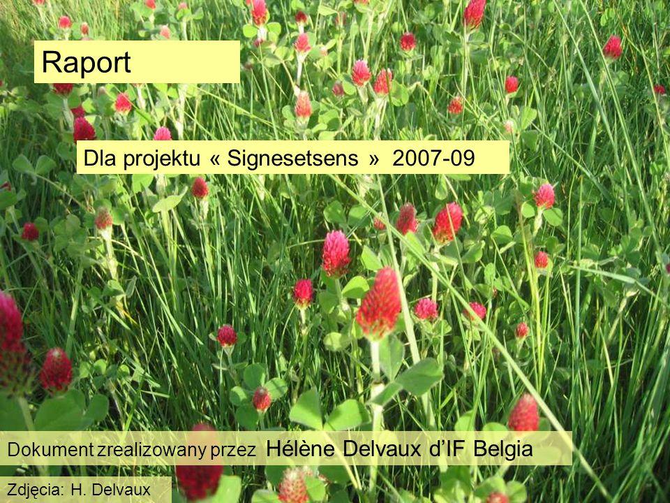 Raport Dla projektu « Signesetsens » 2007-09 Dokument zrealizowany przez Hélène Delvaux dIF Belgia Zdjęcia: H.