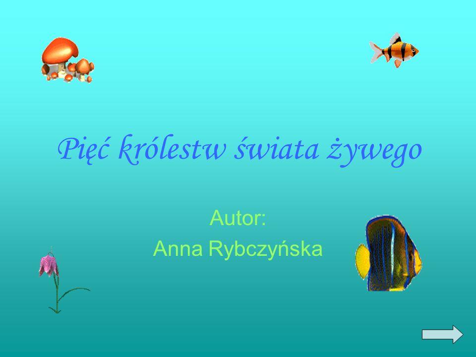 Pięć królestw świata żywego Autor: Anna Rybczyńska