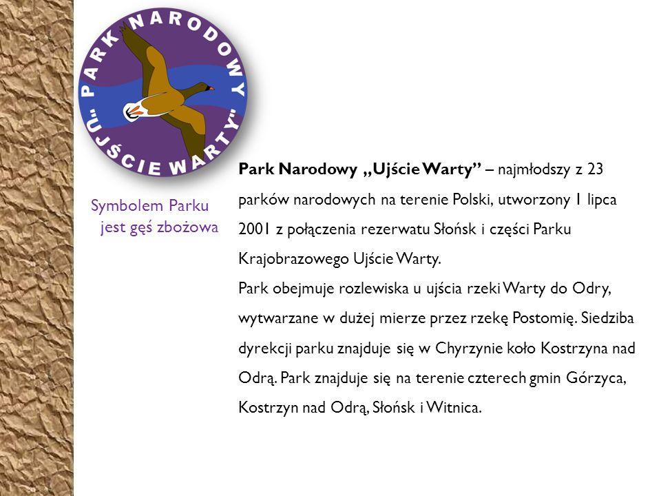 Historia Obszar obecnego Parku Narodowego Ujście Warty, ze względu na naturalne warunki (zabagniony, niedostępny teren), bardzo długo pozostawał prawie niezamieszkały.