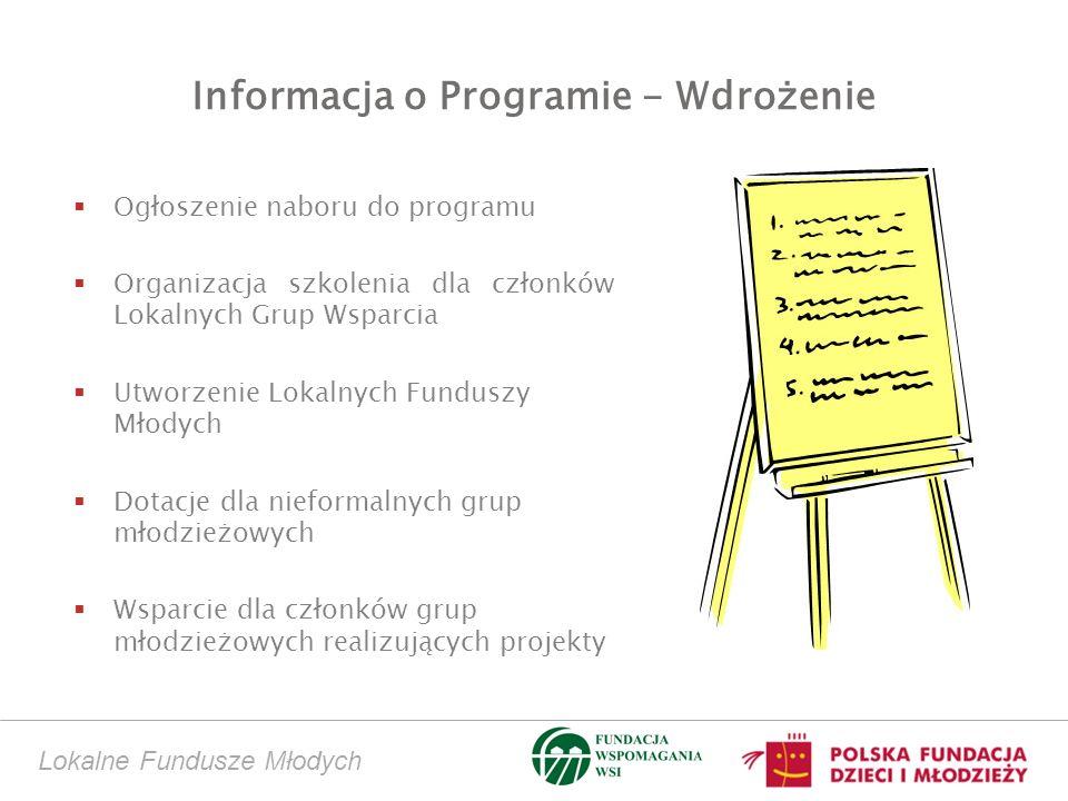 Lokalne Fundusze Młodych Informacja o Programie - Wdrożenie Ogłoszenie naboru do programu Organizacja szkolenia dla członków Lokalnych Grup Wsparcia Utworzenie Lokalnych Funduszy Młodych Dotacje dla nieformalnych grup młodzieżowych Wsparcie dla członków grup młodzieżowych realizujących projekty