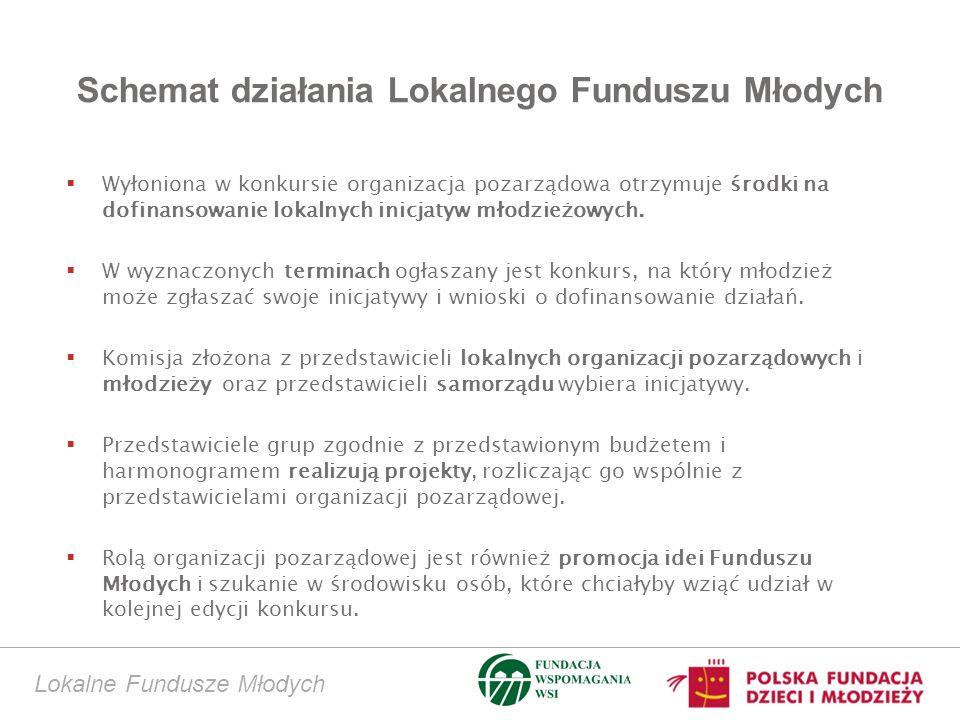 Schemat działania Lokalnego Funduszu Młodych Wyłoniona w konkursie organizacja pozarządowa otrzymuje środki na dofinansowanie lokalnych inicjatyw młodzieżowych.