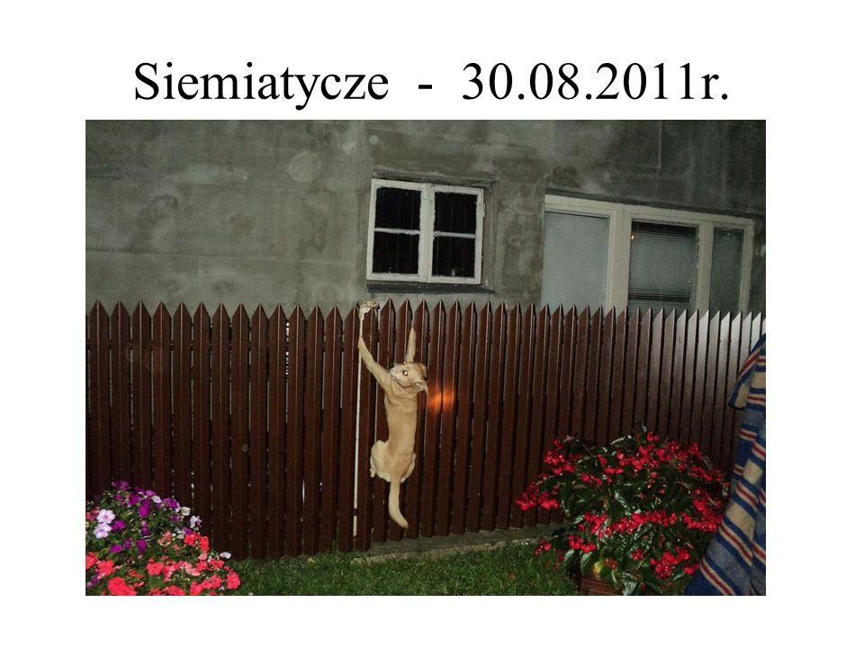 Siemiatycze - 30.08.2011r.