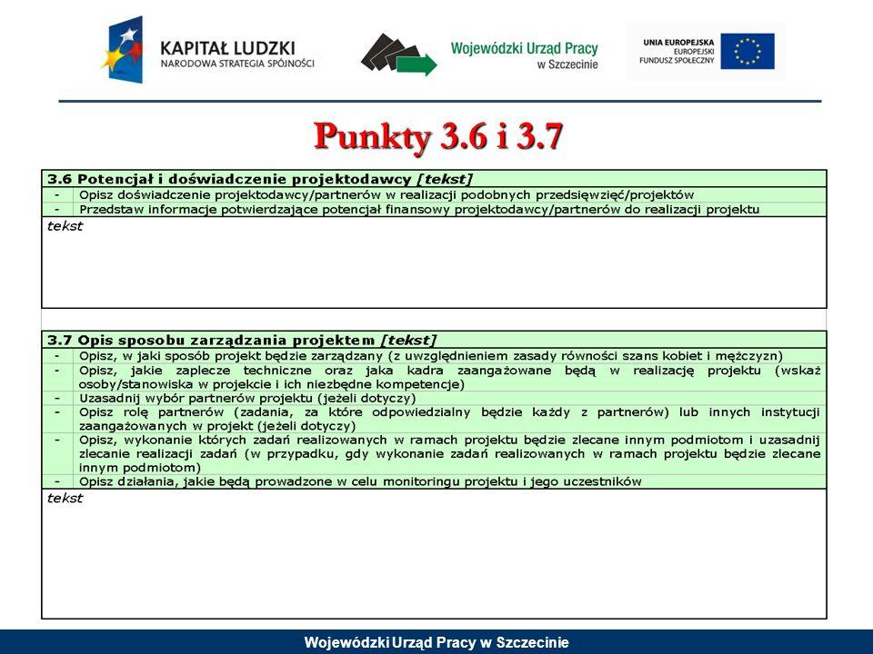 Wojewódzki Urząd Pracy w Szczecinie Punkty 3.6 i 3.7