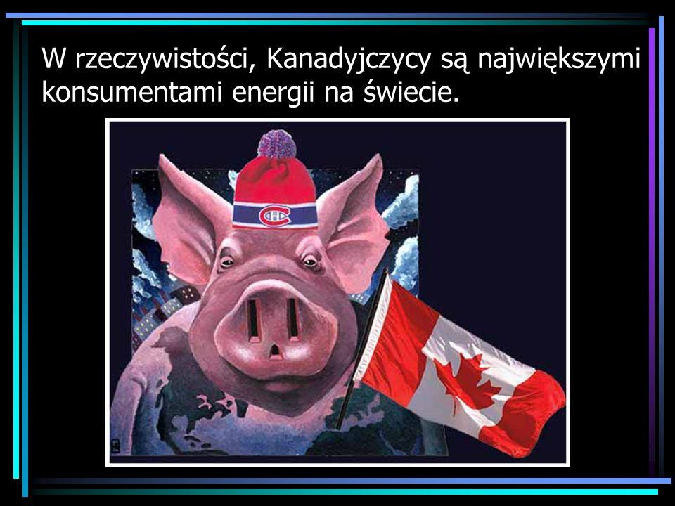 Połowa zasobów energetycznych Kanady pochodzi z ropy.