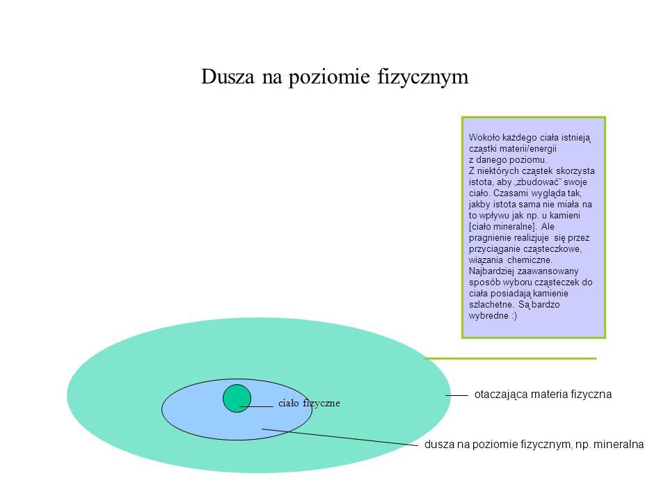 Dusza na poziomie fizycznym ciało fizyczne dusza na poziomie fizycznym, np. mineralna otaczająca materia fizyczna Wokoło każdego ciała istnieją cząstk