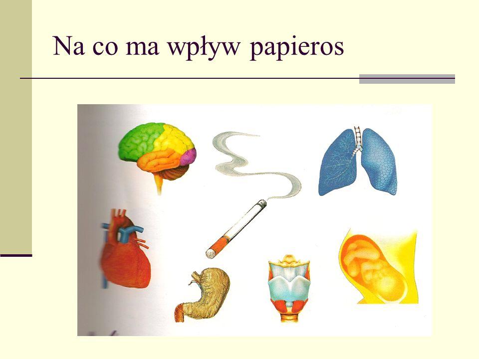 Na co ma wpływ papieros