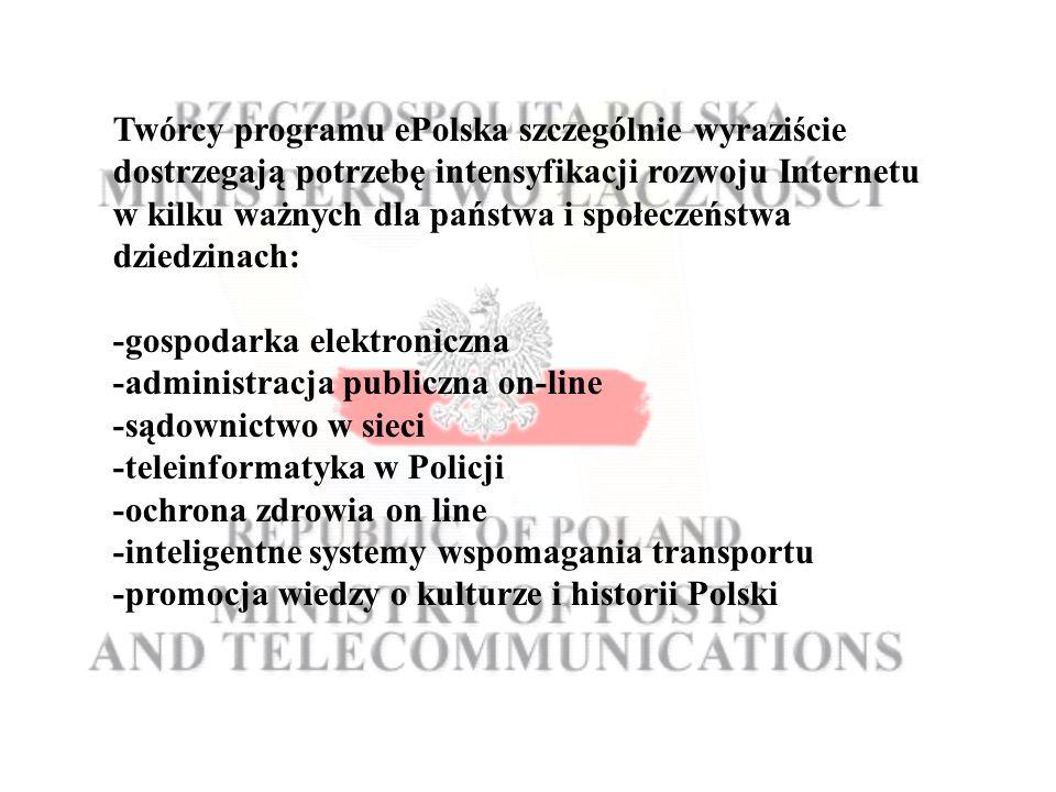 Twórcy programu ePolska szczególnie wyraziście dostrzegają potrzebę intensyfikacji rozwoju Internetu w kilku ważnych dla państwa i społeczeństwa dziedzinach: -gospodarka elektroniczna -administracja publiczna on-line -sądownictwo w sieci -teleinformatyka w Policji -ochrona zdrowia on line -inteligentne systemy wspomagania transportu -promocja wiedzy o kulturze i historii Polski