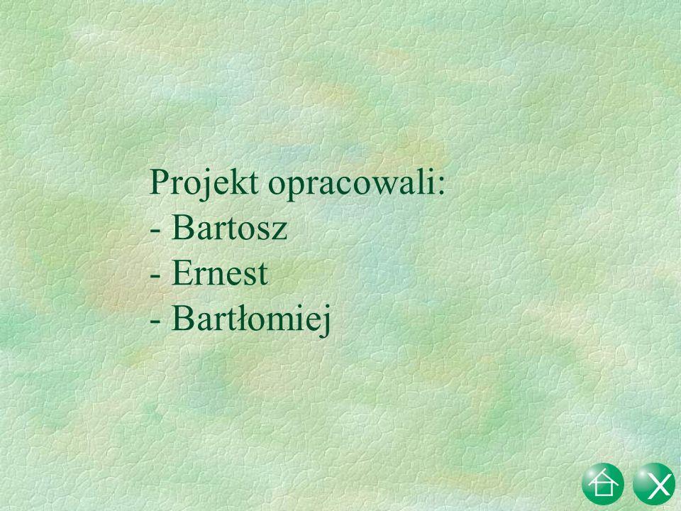 Projekt opracowali: - Bartosz - Ernest - Bartłomiej