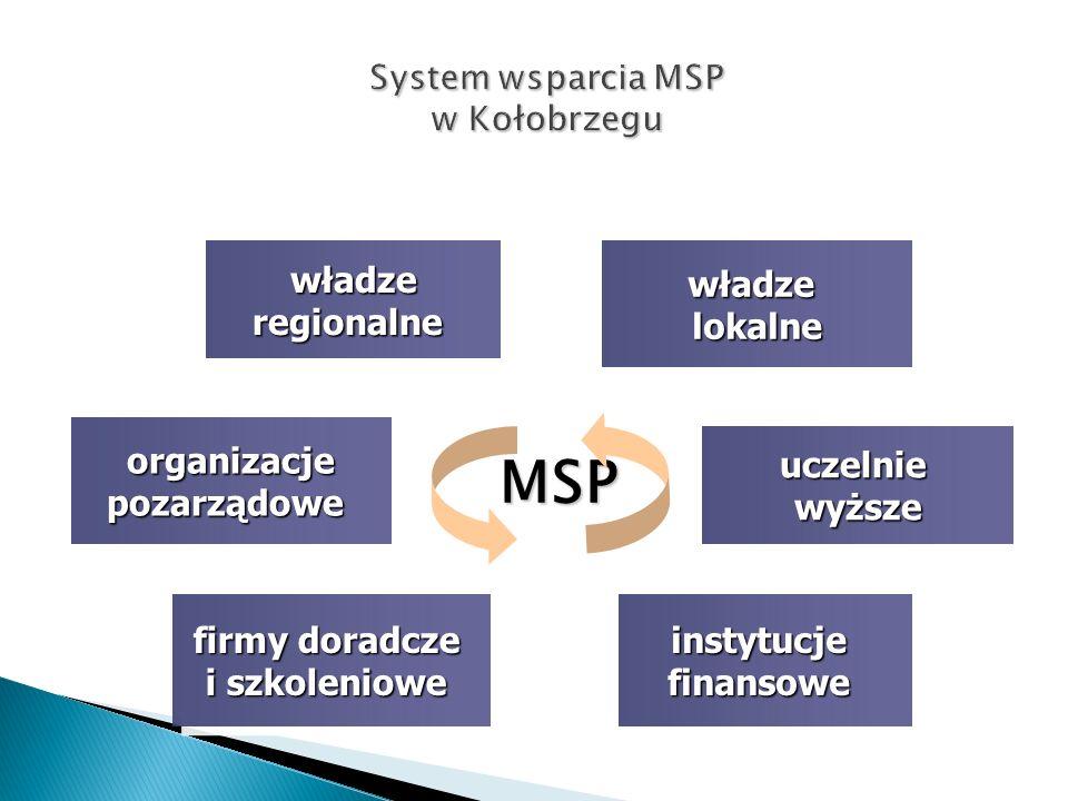 MSP władzeregionalnewładzeregionalnewładzelokalnewładzelokalne uczelniewyższeuczelniewyższe organizacjepozarządoweorganizacjepozarządowe instytucjefinansoweinstytucjefinansowe firmy doradcze i szkoleniowe firmy doradcze i szkoleniowe