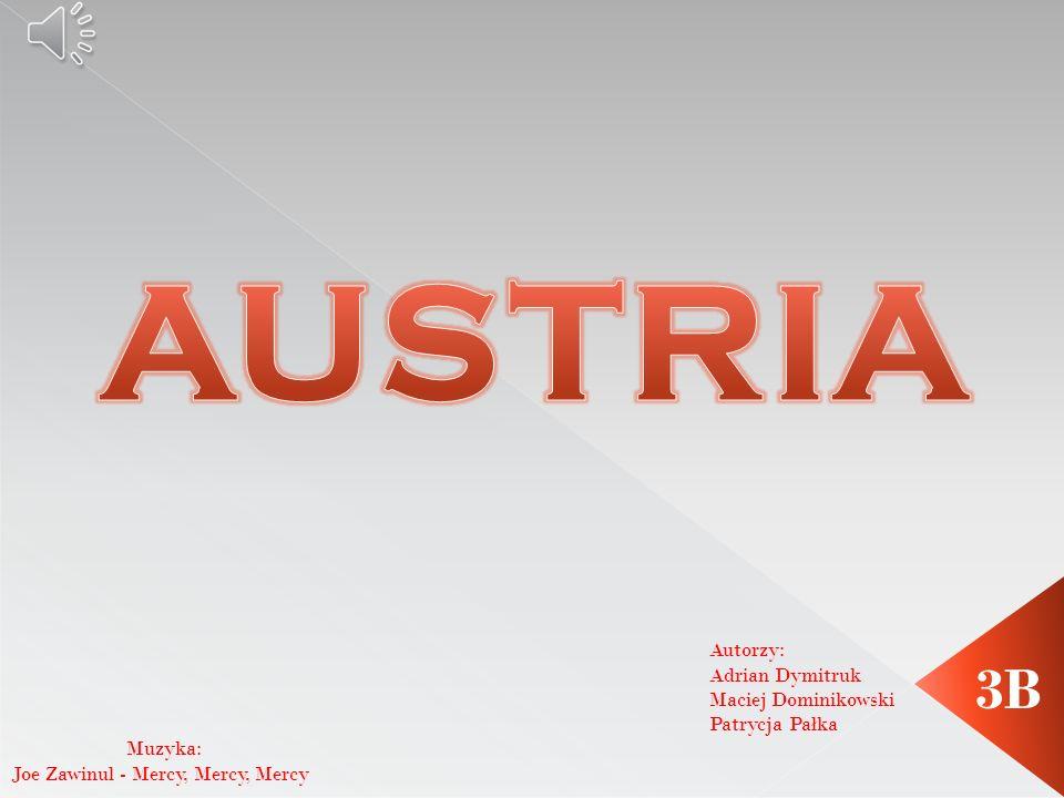 Autorzy: Adrian Dymitruk Maciej Dominikowski Patrycja Pałka 3B Muzyka: Joe Zawinul - Mercy, Mercy, Mercy