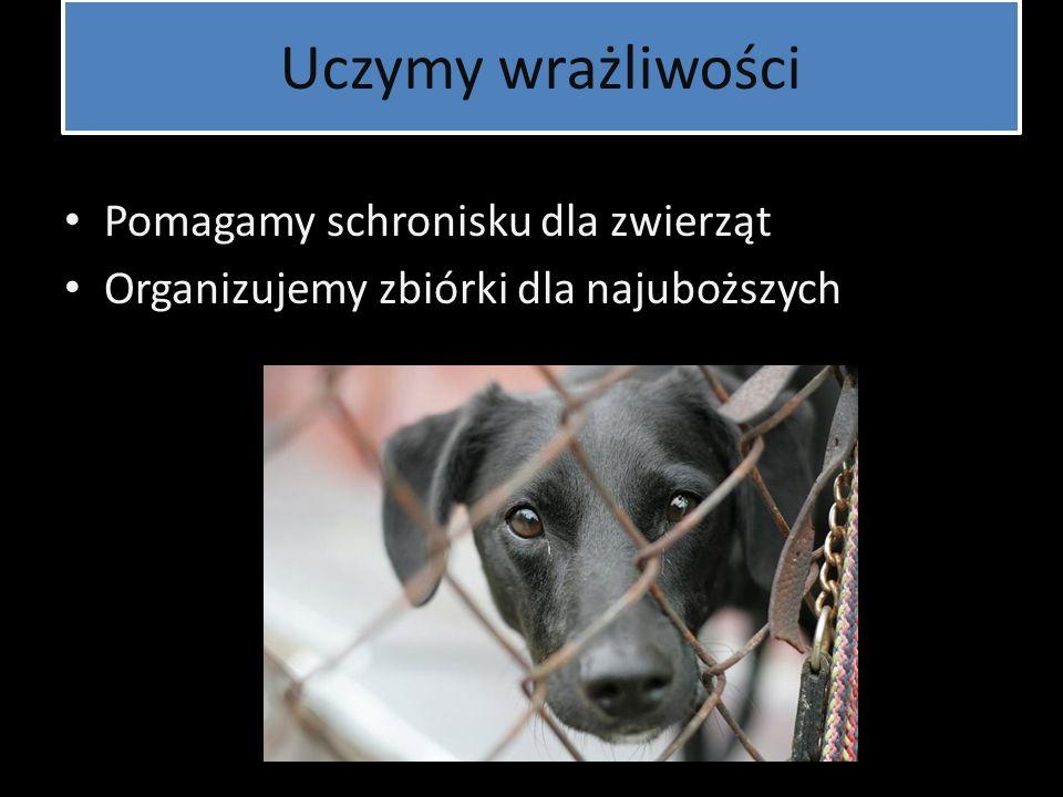 Uczymy wrażliwości Pomagamy schronisku dla zwierząt Organizujemy zbiórki dla najuboższych