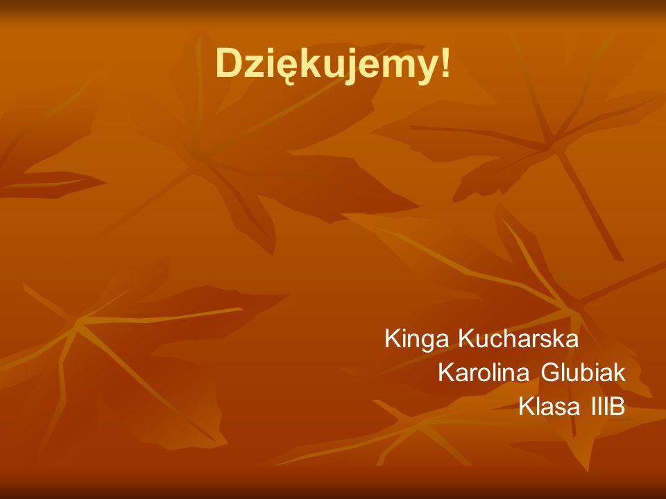 Dziękujemy! Kinga Kucharska Karolina Glubiak Klasa IIIB