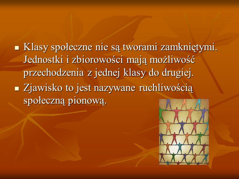 Bibliografia Wiedza o społeczeństwie- podręcznik zakres rozszerzony część I, Gdynia 2005 Vademecum Matura 2011 Wiedza o społeczeństwie, wyd.Operon