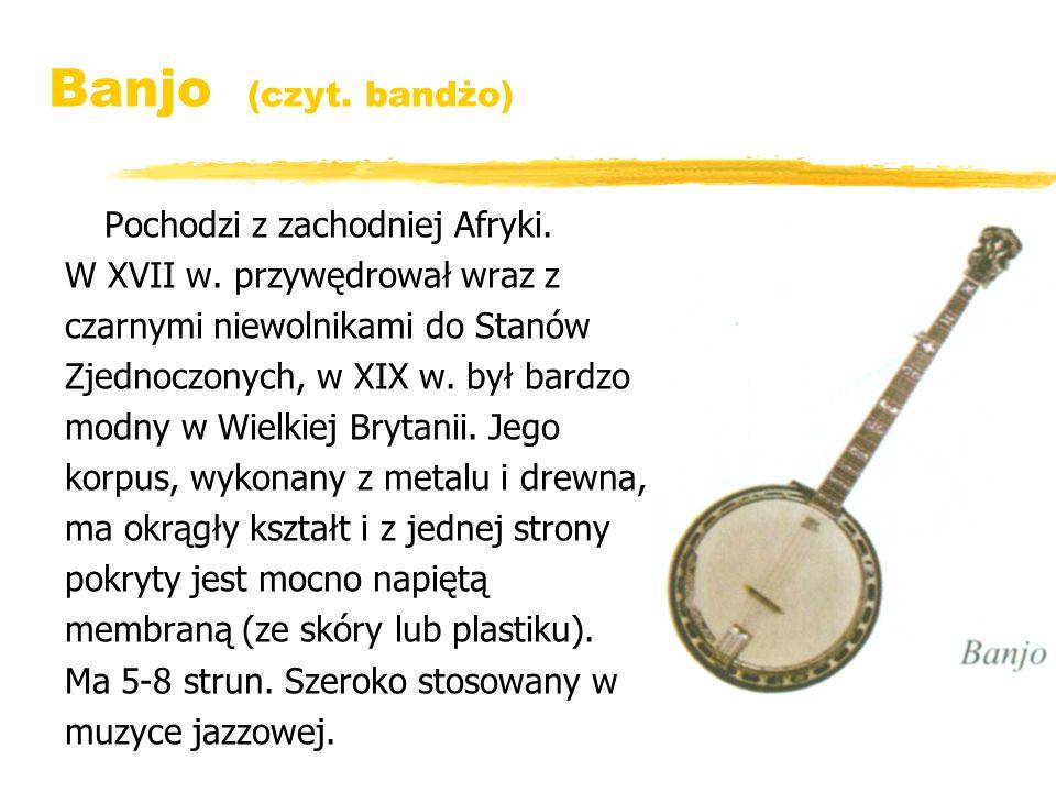 Banjo (czyt. bandżo) Pochodzi z zachodniej Afryki. W XVII w. przywędrował wraz z czarnymi niewolnikami do Stanów Zjednoczonych, w XIX w. był bardzo mo