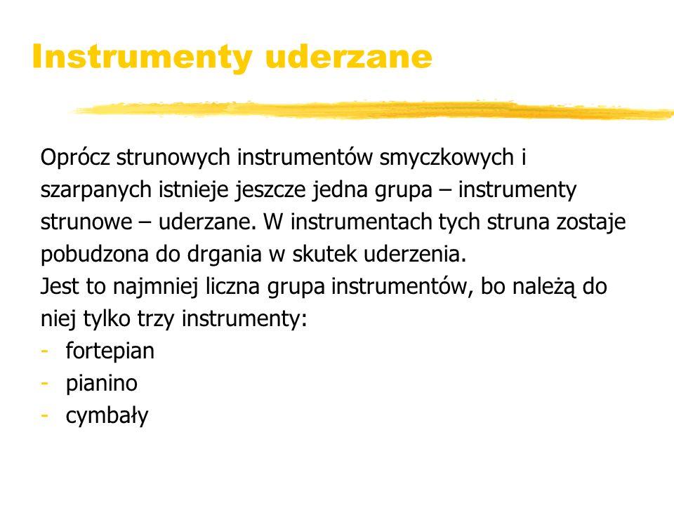 Instrumenty uderzane Oprócz strunowych instrumentów smyczkowych i szarpanych istnieje jeszcze jedna grupa – instrumenty strunowe – uderzane. W instrum