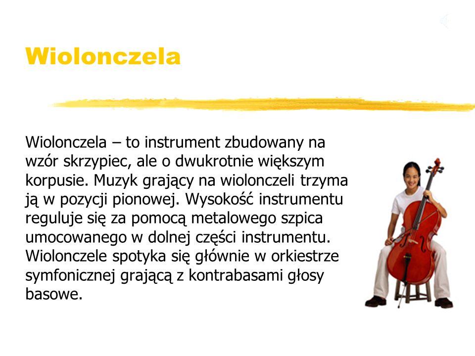 Wiolonczela Wiolonczela – to instrument zbudowany na wzór skrzypiec, ale o dwukrotnie większym korpusie. Muzyk grający na wiolonczeli trzyma ją w pozy