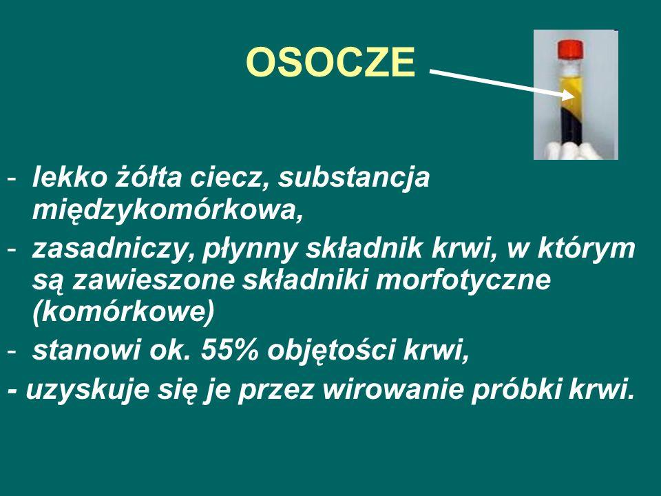 OSOCZE -lekko żółta ciecz, substancja międzykomórkowa, -zasadniczy, płynny składnik krwi, w którym są zawieszone składniki morfotyczne (komórkowe) -st