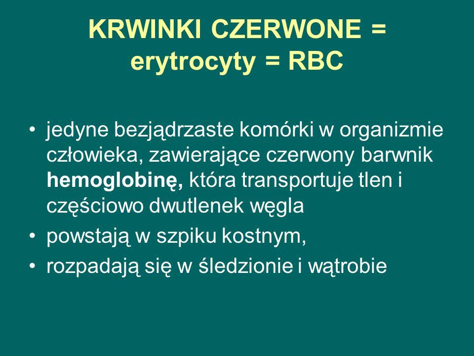 KRWINKI CZERWONE = erytrocyty = RBC jedyne bezjądrzaste komórki w organizmie człowieka, zawierające czerwony barwnik hemoglobinę, która transportuje tlen i częściowo dwutlenek węgla powstają w szpiku kostnym, rozpadają się w śledzionie i wątrobie