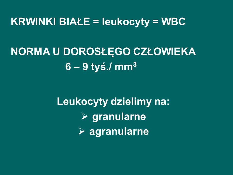 KRWINKI BIAŁE = leukocyty = WBC NORMA U DOROSŁĘGO CZŁOWIEKA 6 – 9 tyś./ mm 3 Leukocyty dzielimy na: granularne agranularne