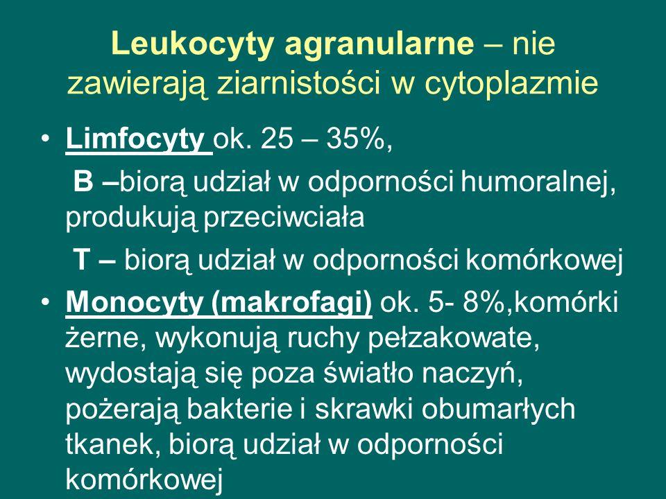 Leukocyty agranularne – nie zawierają ziarnistości w cytoplazmie Limfocyty ok. 25 – 35%, B –biorą udział w odporności humoralnej, produkują przeciwcia