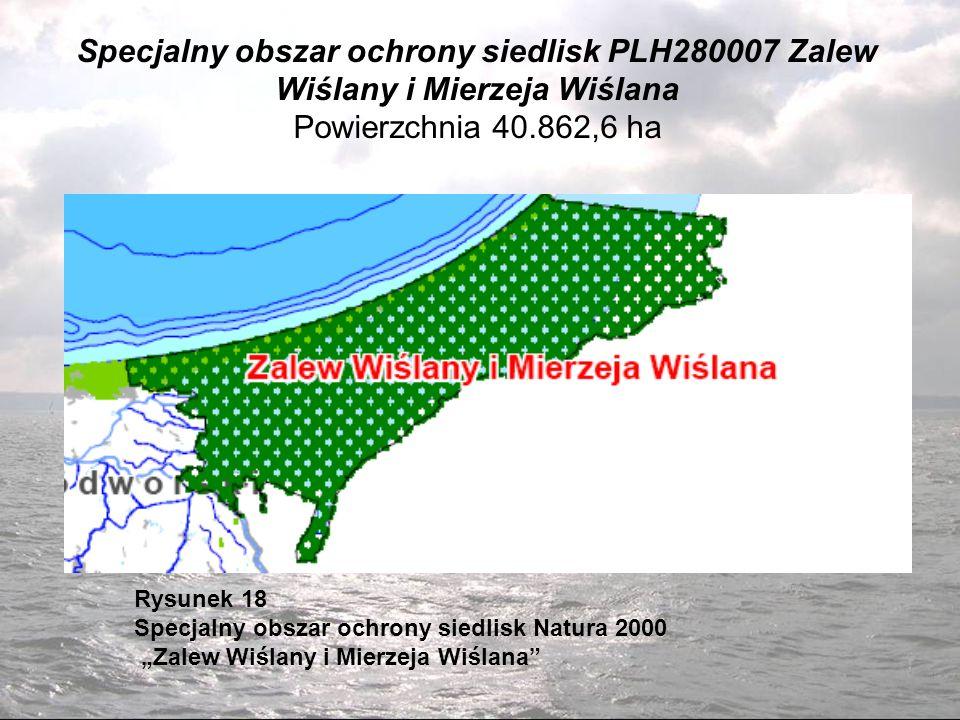 Specjalny obszar ochrony siedlisk PLH280007 Zalew Wiślany i Mierzeja Wiślana Powierzchnia 40.862,6 ha Rysunek 18 Specjalny obszar ochrony siedlisk Natura 2000 Zalew Wiślany i Mierzeja Wiślana