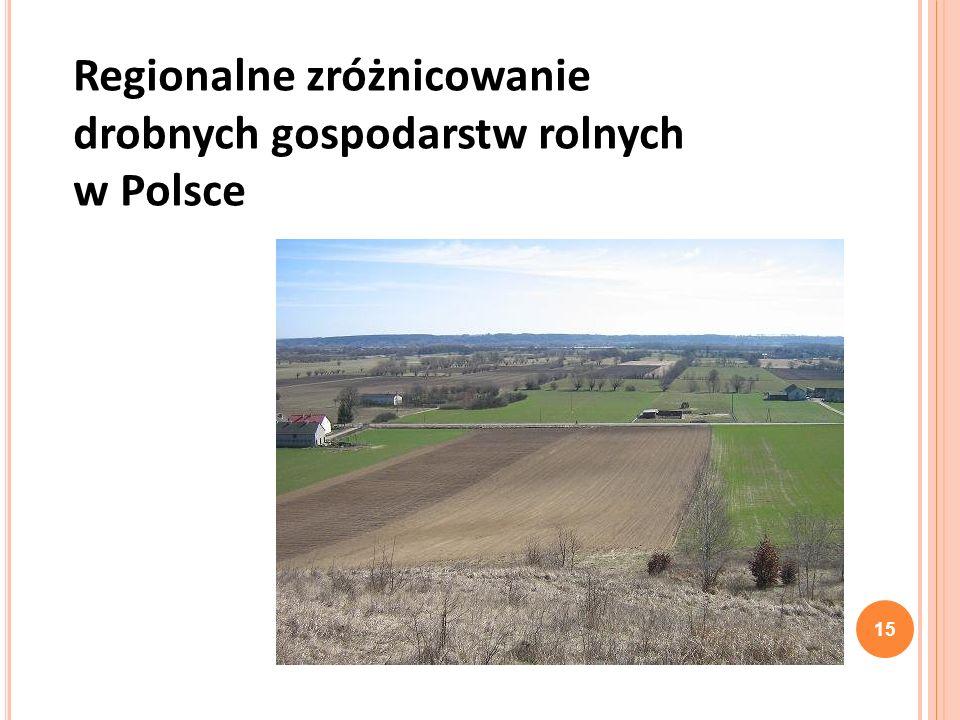Regionalne zróżnicowanie drobnych gospodarstw rolnych w Polsce 15
