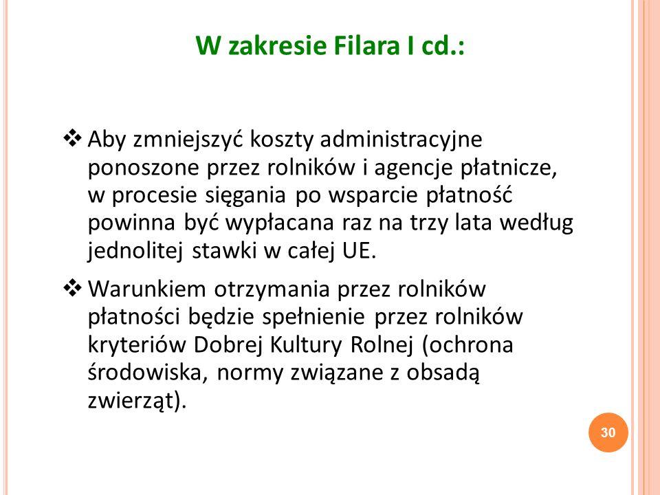 30 W zakresie Filara I cd.: Aby zmniejszyć koszty administracyjne ponoszone przez rolników i agencje płatnicze, w procesie sięgania po wsparcie płatno