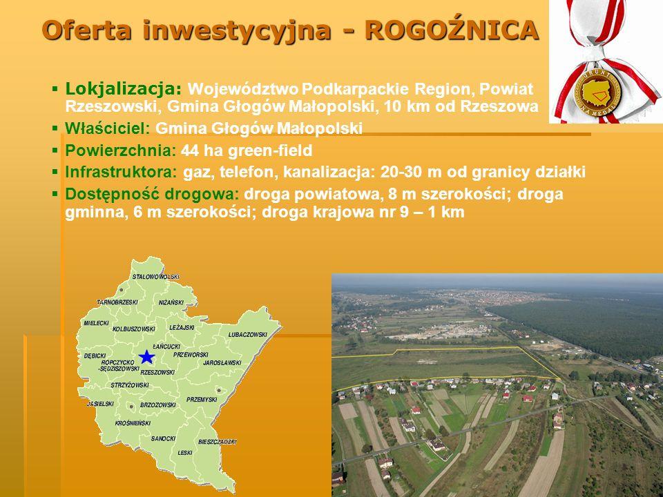 Lokjalizacja: Województwo Podkarpackie Region, Powiat Rzeszowski, Gmina Głogów Małopolski, 10 km od Rzeszowa Właściciel: Gmina Głogów Małopolski Powie