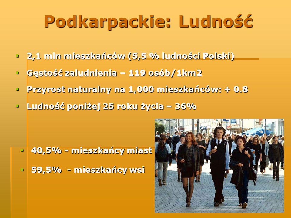 Podkarpackie: Ludność 2,1 mln mieszkańców (5,5 % ludności Polski) 2,1 mln mieszkańców (5,5 % ludności Polski) Gęstość zaludnienia – 119 osób/1km2 Gęst