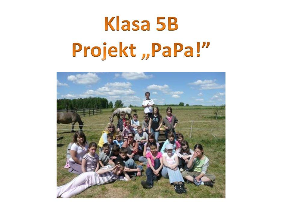 Podczas jednej z godzin wychowawczych dowiedzieliśmy się o naszym uczestnictwie w programie PaPa!.