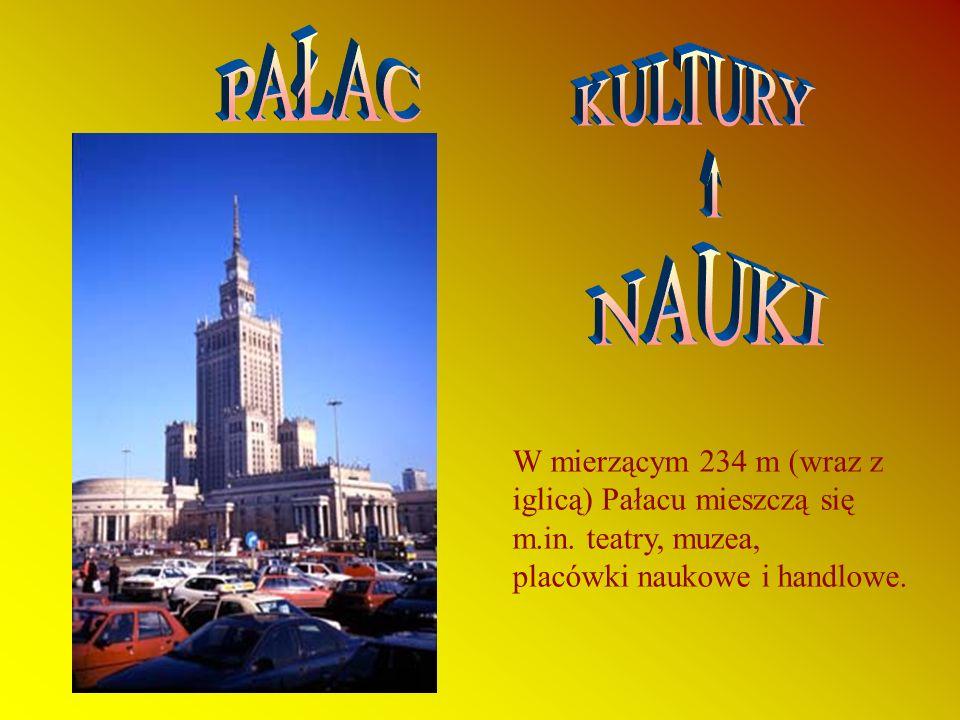 W mierzącym 234 m (wraz z iglicą) Pałacu mieszczą się m.in.
