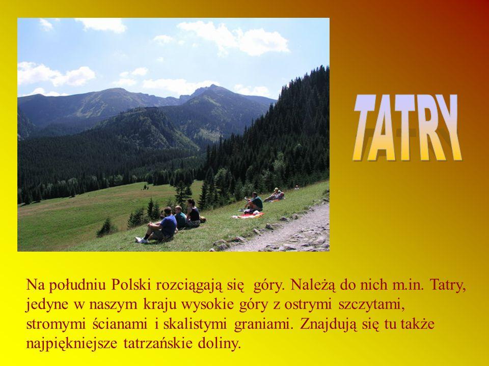 Na południu Polski rozciągają się góry.Należą do nich m.in.