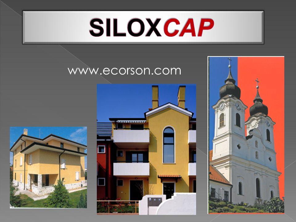 www.ecorson.com