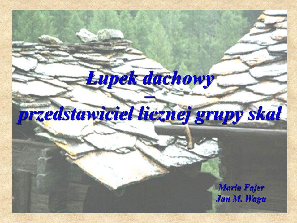 Łupek dachowy – przedstawiciel licznej grupy skał Maria Fajer Maria Fajer Jan M. Waga
