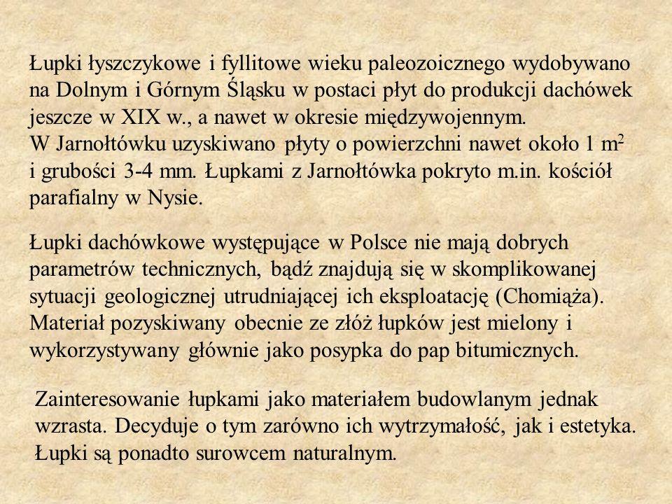 Łupki łyszczykowe i fyllitowe wieku paleozoicznego wydobywano na Dolnym i Górnym Śląsku w postaci płyt do produkcji dachówek jeszcze w XIX w., a nawet