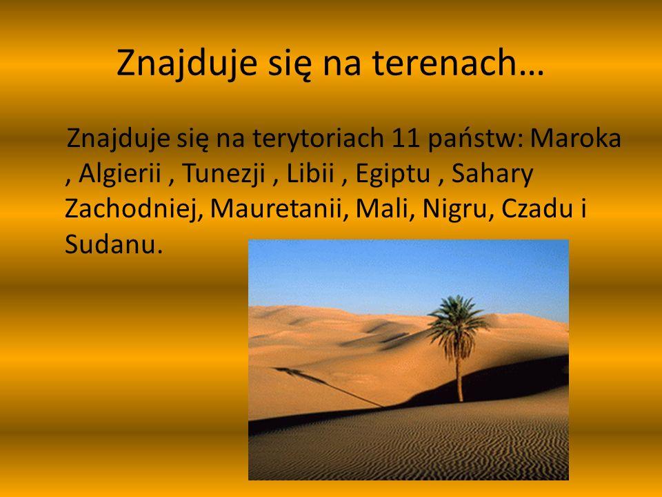 A dokładniej 14 pustyń : Al-Dżuf Erg Szasz Erg Ikidi Wielki Erg Wschodni Wielki Erg Zachodni Tadmait Tanizruft Hamada al-Hamra Ahaggar Tibesti Tenere Libijska Bajuda Arabska