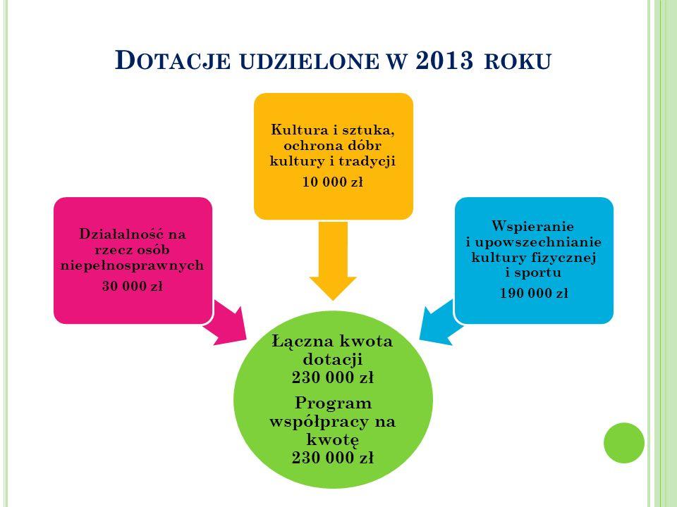 D OTACJE UDZIELONE W 2013 ROKU Łączna kwota dotacji 230 000 zł Program współpracy na kwotę 230 000 zł Działalność na rzecz osób niepełnosprawnych 30 0