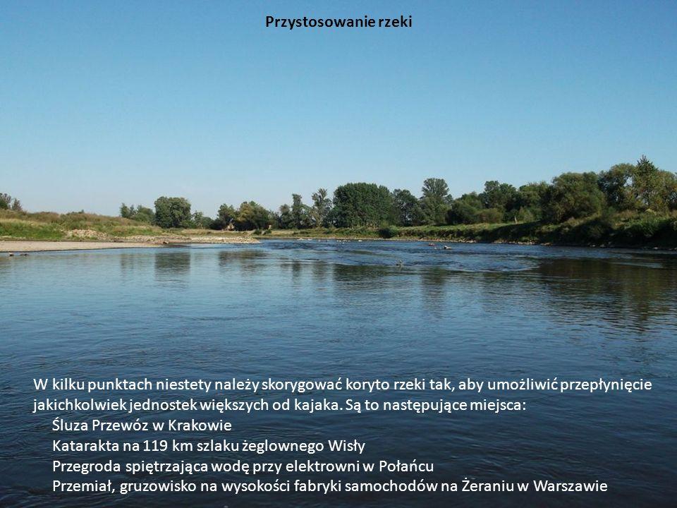 Przystosowanie rzeki W kilku punktach niestety należy skorygować koryto rzeki tak, aby umożliwić przepłynięcie jakichkolwiek jednostek większych od ka