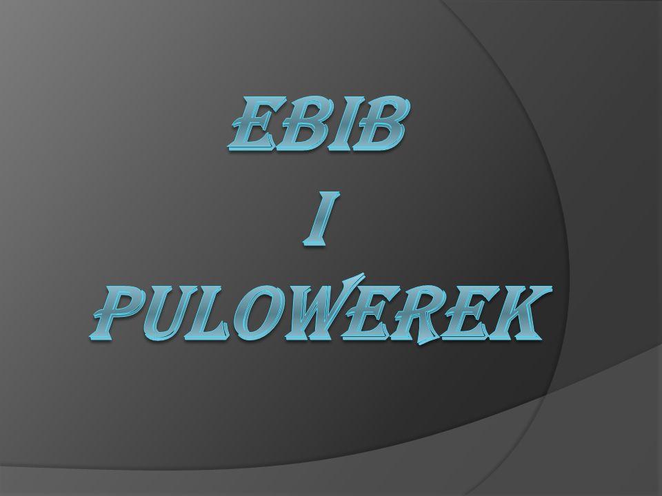 Tresci zawarte w pracy Ogólny zarys EBIBu Stowarzyszenie Bibliotekarzy Polskich Biuletyn EBIB Strony EBIBu Archiwum EBIB Stowarzyszenie EBIB Portal Pulowerek