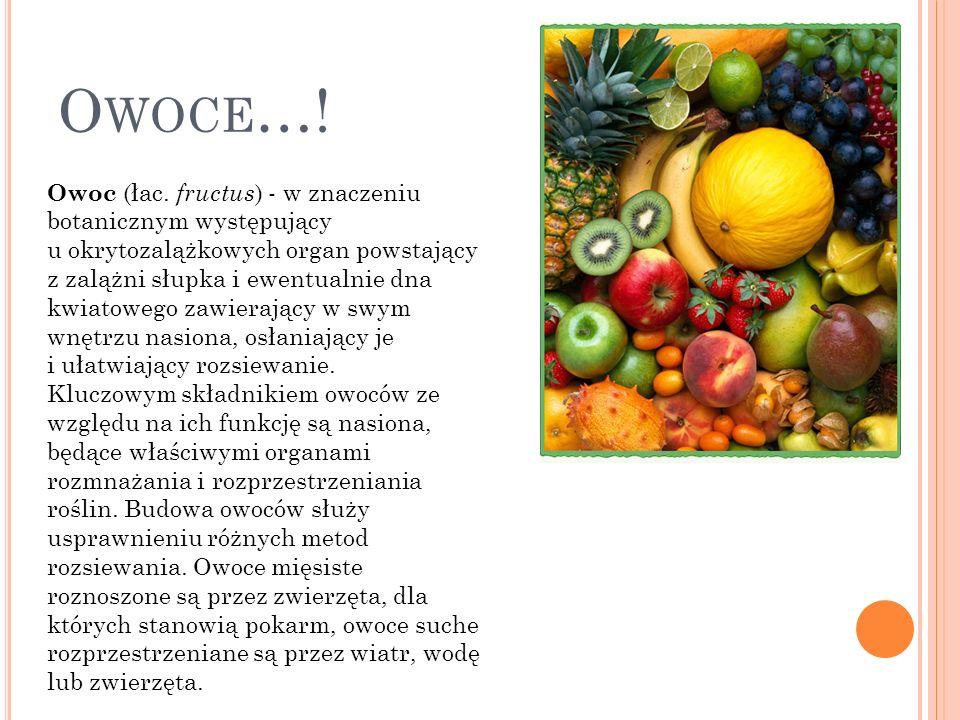 W ARZYWA … Warzywa to rośliny zielne służące ludziom za pokarm. Uprawą oraz produkcją warzyw zajmuje się warzywnictwo. Warzywa mają wysoką wartość bio