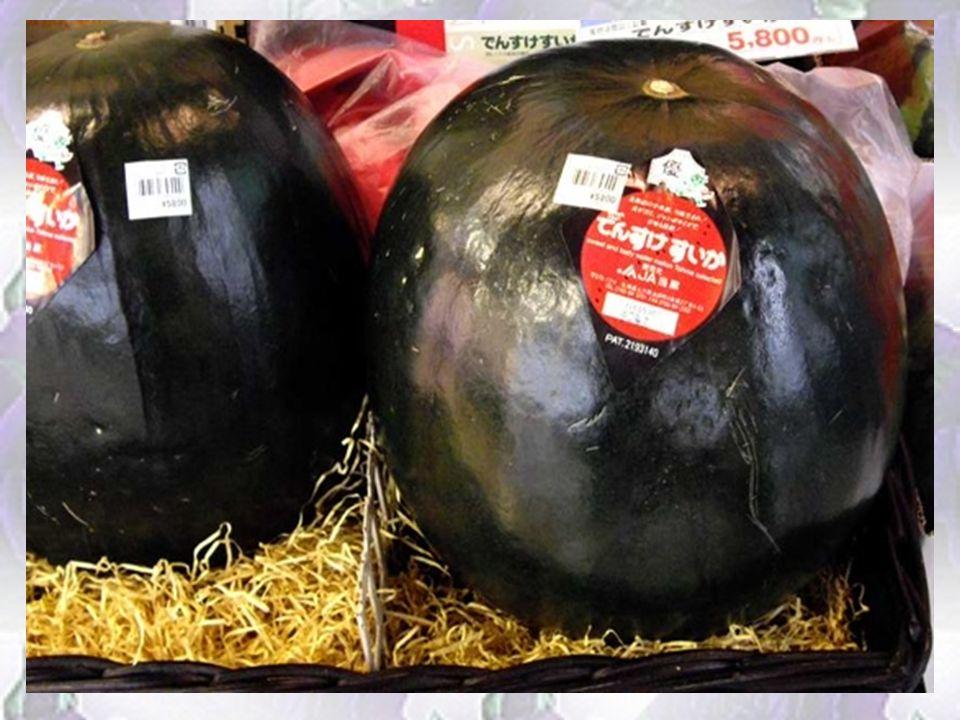 Arbuz Densuke Jest czarny, twardszy i w smaku bardziej wyrazisty niż ten, który znamy. Najdroższe arbuzy świata rosną tylko na japońskiej wyspie Hokka